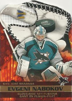 Evgeni Nabokov Hockey Cards